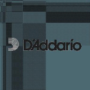 Diadarrio Logo